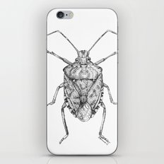 Pentatomidae iPhone & iPod Skin