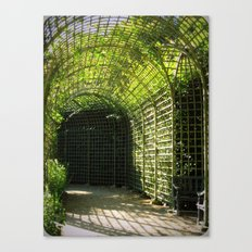 Under the garden arches of Versailles  Canvas Print