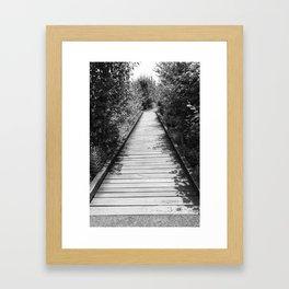 Mt. A Long Bridge Framed Art Print