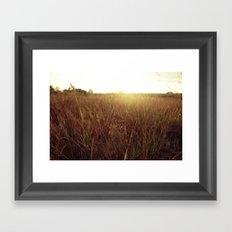 Sweet Sunset Framed Art Print