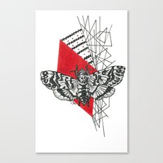 Hawkmoth Abstract Canvas Print