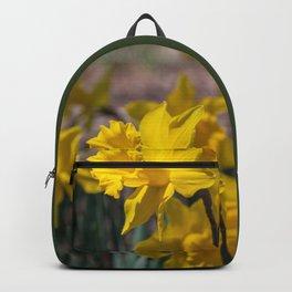 Daffodils 3 Backpack