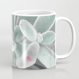 plants succulents and velvet Coffee Mug