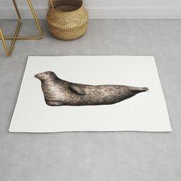 Grey seal Rug