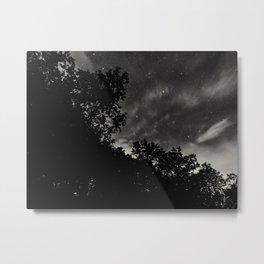 Fall...ing in love with fall. -III.-  Metal Print