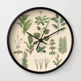 Botany Chart Wall Clock