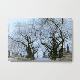 Greenwood Fog Metal Print