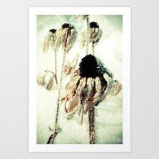 Dying Beauty Art Print