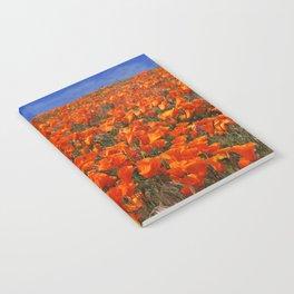 Poppy Fields Of California Notebook