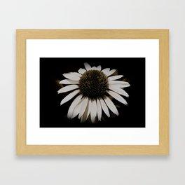 flower in the dark  Framed Art Print