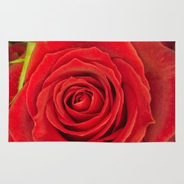 Red Rose for Love Rug