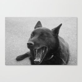 The Other Laughing Dog Canvas Print