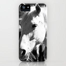 White Horse-B&W iPhone Case