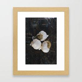 Garlic cloves Framed Art Print