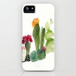 CACTUS N3 iPhone Case
