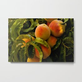 Peaches for me Metal Print