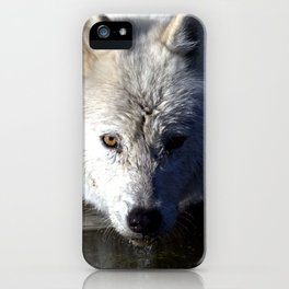 Quenched iPhone Case