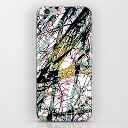 CRACKED CHINA iPhone Skin