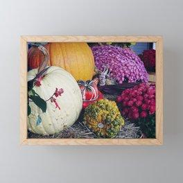 Assorted Pumpkins and Gourds for Autumn Framed Mini Art Print