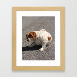 If You Have An Itch... Fuerteventura Framed Art Print