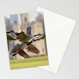 The fly past Stationery Cards