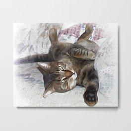 Mister Cat Metal Print