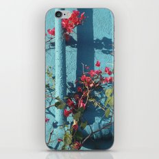 Echo Park iPhone & iPod Skin