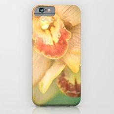 Sweet Lorraine Slim Case iPhone 6s