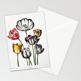 Tulips very old illustration Stationery Cards