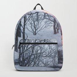 Q2x Backpack