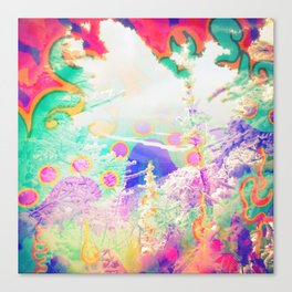 Mountain Top Canvas Print