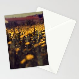 a sea of daisies Stationery Cards
