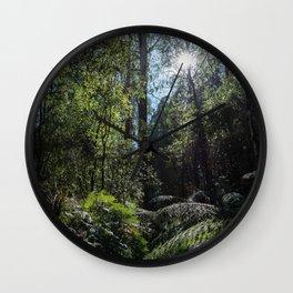 Rainforest Walk Wall Clock