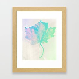 Fall Colors 1 Framed Art Print
