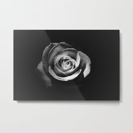BLACK - WHITE - ROSE Metal Print