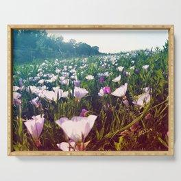 Field of Pink Evening Primrose - Texas Wildflowers Serving Tray