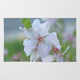Almond tree flower blooming Rug
