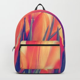 Spring 151 Backpack