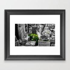 NYC - Green Park Framed Art Print