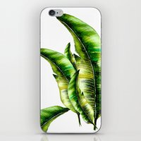 banana leaf iPhone & iPod Skins featuring Banana Leaf -watercolor  by craftberrybush