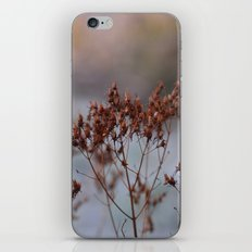 In The Frost iPhone & iPod Skin