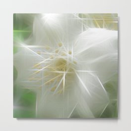 White Shiny Jasmine Metal Print