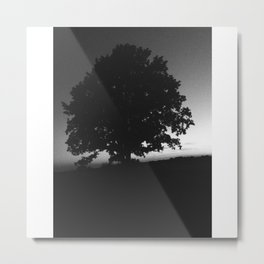 Transcend Metal Print