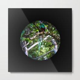 Quetzal Medallion Metal Print