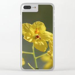 Closeup of Fully Opened Palo Brea Blossom Clear iPhone Case