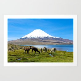 Chungara Lake, Chile Art Print