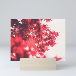 Japanese Maple Leaves Mini Art Print