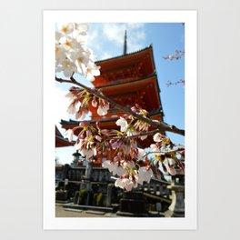 Kiyomizu-dera - Cherry Blossoms Art Print