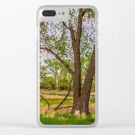 Cottonwoods at Lee's Farm 3 Clear iPhone Case