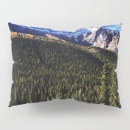 Risky Business Pillow Sham